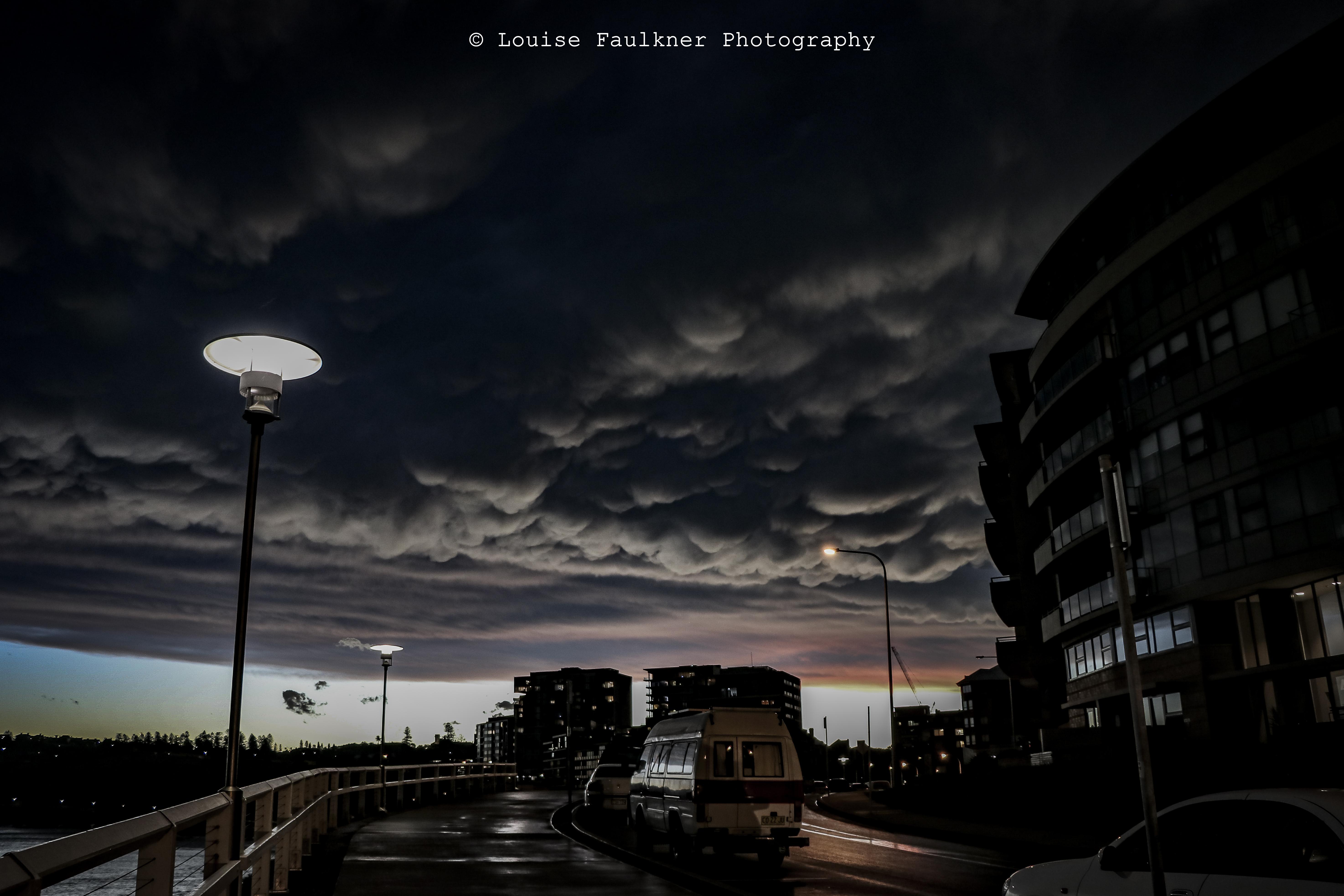 Newcastle Storm 2 WM