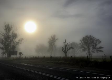 Gloucester mist.