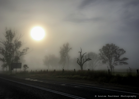 On the way to Gloucester and 8am fog - Louise Fualkner Photography - WM