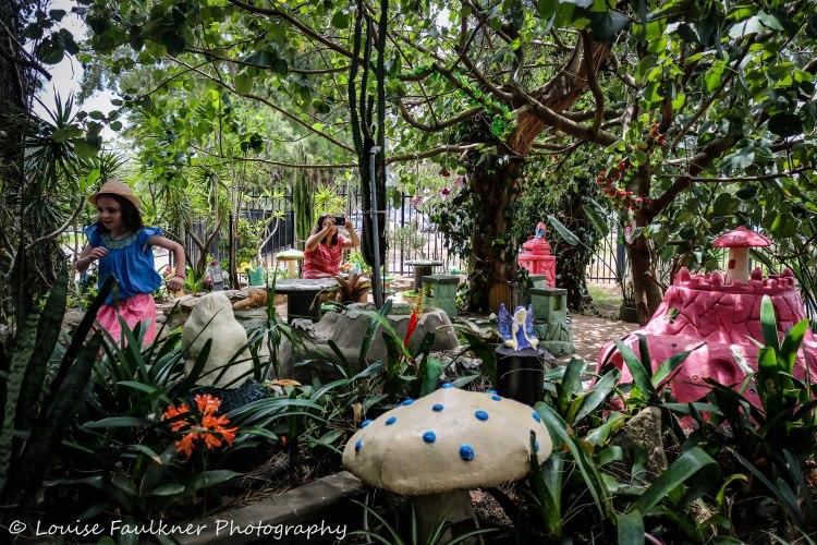 broadmeadow-fairy-garden-1-louise-faulkner-photography-27-nov-2016