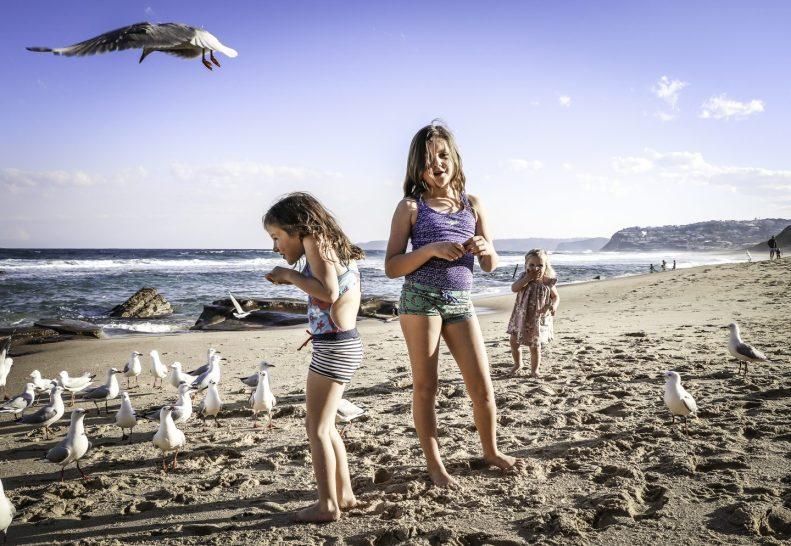 cropped-the-birds-i-5x7.jpg