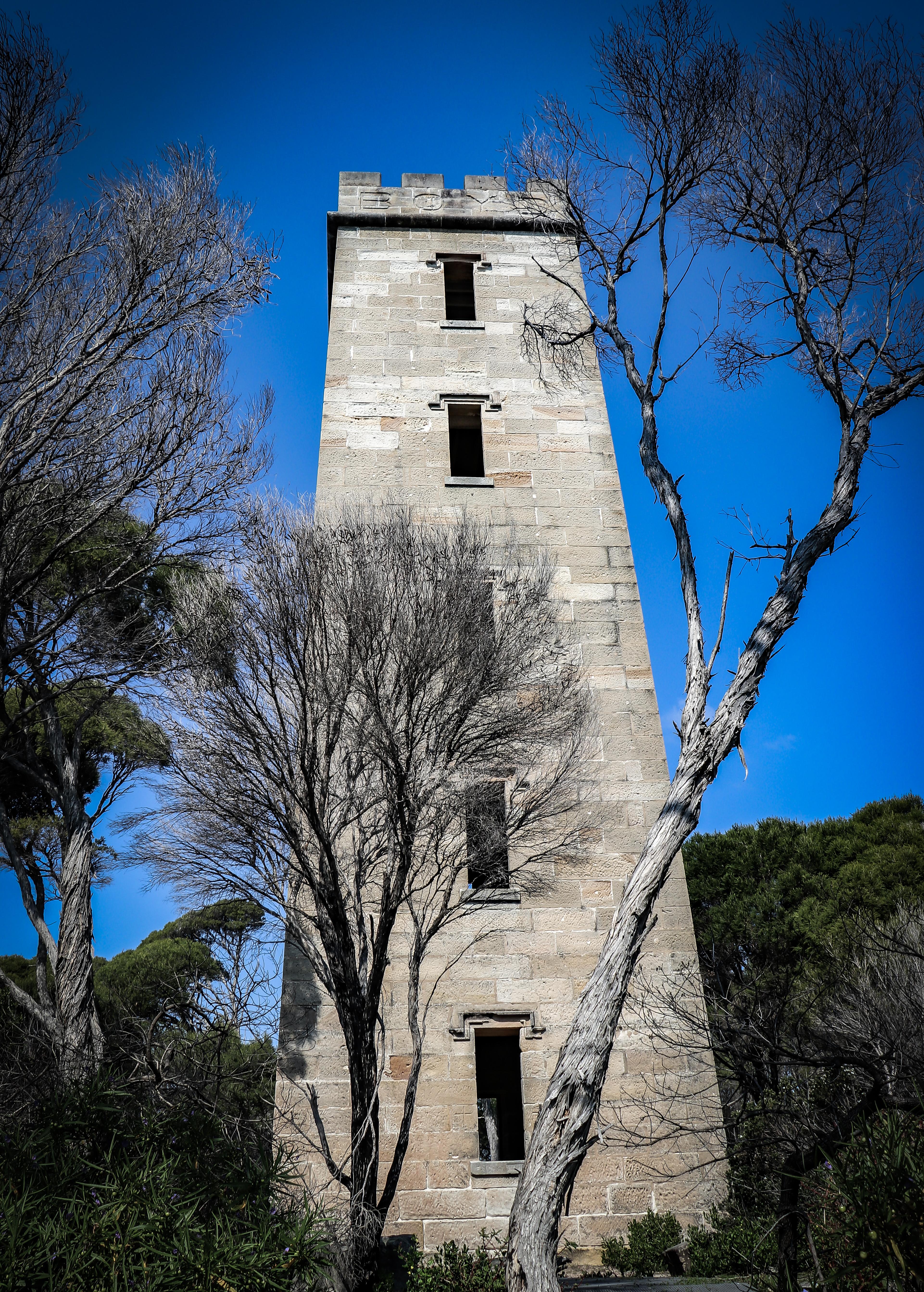 Boyd tower 4